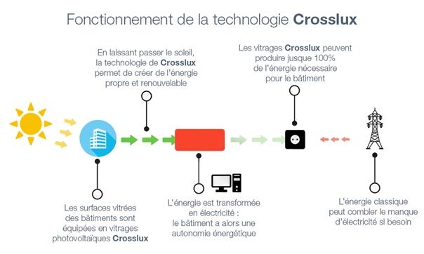 Crosslux cherche à lever 900000 euros sur Letitseed