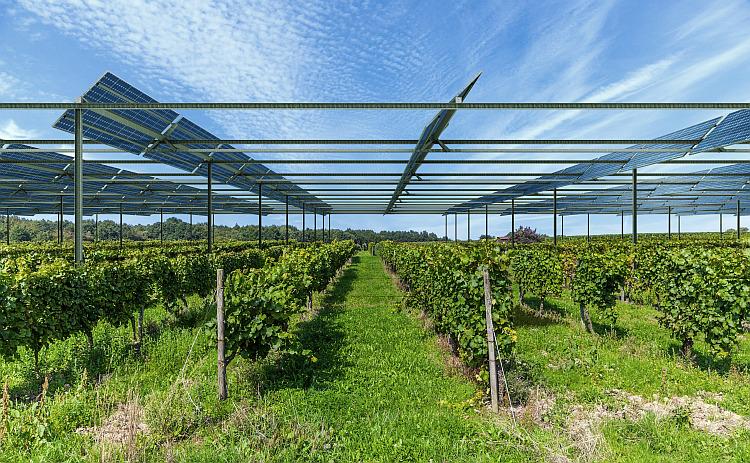 Les premières installations PV de Sun'Agri inaugurées début juillet 2018 ?