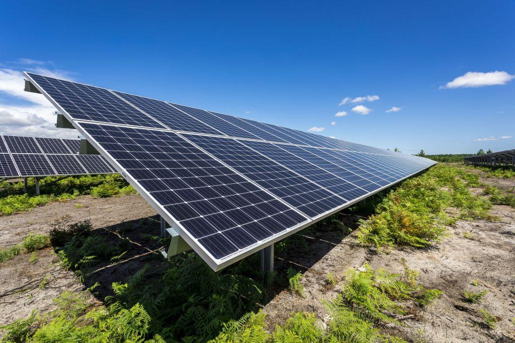 AO PV Haut-Rhin : un projet de 22 MWc pour ENGIE Green et Vialis à Volgelsheim