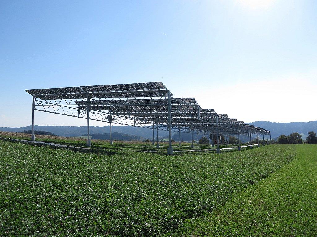 AgriVoltaics2020: une conférence internationale dédiée «Agri-PV» du 26 au 28 août 2020 à Perpignan