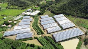 Akuo inaugure la centrale Focola en Nouvelle-Calédonie