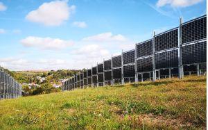 Total veut dynamiser l'agrivoltaïsme avec l'Allemand Next2Sun
