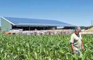 Tenergie acquiert 43 centrales solaires dans le Sud-Ouest