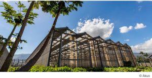 Akuo arrive en tête de l'appel d'offres solaire CRE 4.7 pour les zones non-interconnectées (ZNI)
