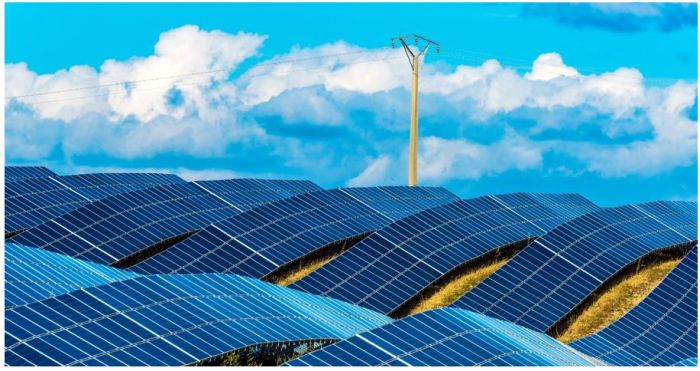 Les énergies renouvelables représentent presque les trois quarts des ajouts de capacité en 2019