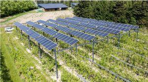 Agrivoltaïsme dynamique : Sun'Agri et ITK renforcent leur partenariat