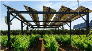 Solar Impulse : Sun'Agri labélisé par la fondation de Bertrand Piccard