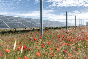 Trina Solar livre les 18 000 premiers modules du parc de Weesow-Willmersdorf en Allemagne