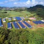 Apex Energies réalise la plus grande centrale en toiture de Martinique 1,3MWc
