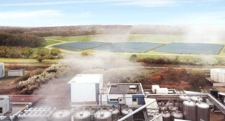 Newheat construit la plus grande centrale solaire thermique de France