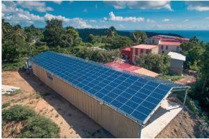 GreenYellow lance son 1er hangar agricole solaire en injection réseau en Martinique