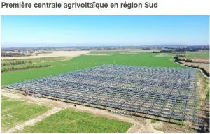 Voltalia met en service son premier champ agrivoltaïque
