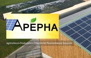 Projets photovoltaïques en coactivité agricole : wpd signe un accord de collaboration avec l'Apepha
