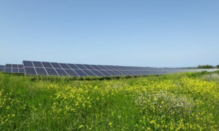 Corsica Sole met en service sa première centrale PV construite grâce à l'investissement citoyen en Lot-et-Garonne